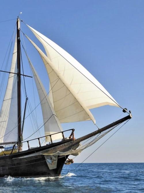 sailing isla negra cover 1