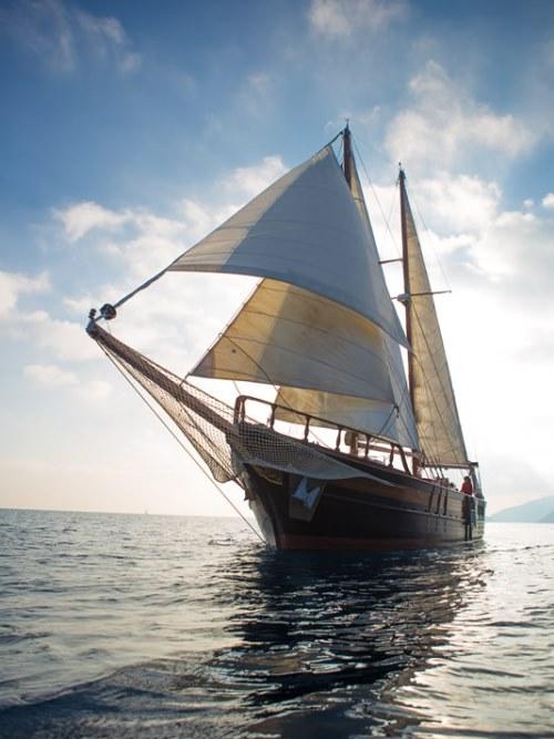 isla negra sailing
